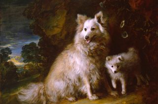 'Pomerania perra y cachorro', de Gainsborough.