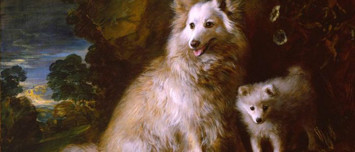 'Pomerania perra y cachorro', de Gainsborough.